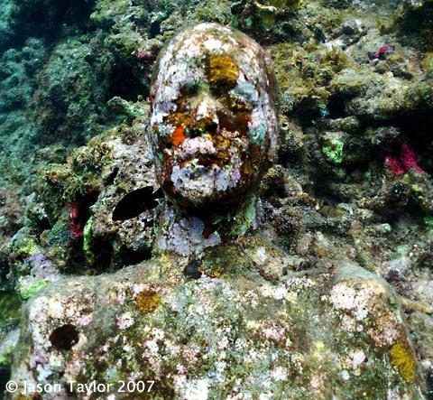 grace-reef-3.jpg