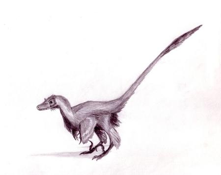 757px-velociraptor_dinoguy2.jpg